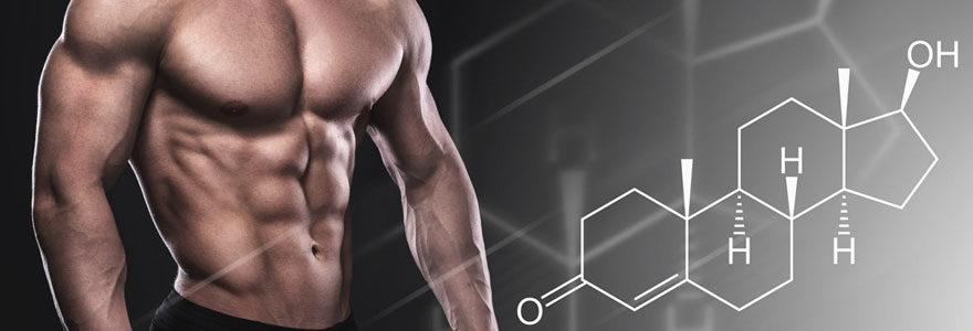 testostérone naturellement